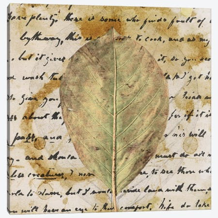 Earth Leaf II Canvas Print #LON114} by Alonzo Saunders Canvas Art Print