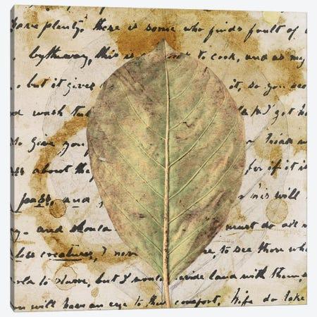Earth Leaf II Canvas Print #LON114} by Alonzo Saunders Canvas Art Print