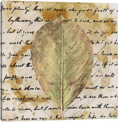 Earth Leaf II Canvas Art Print