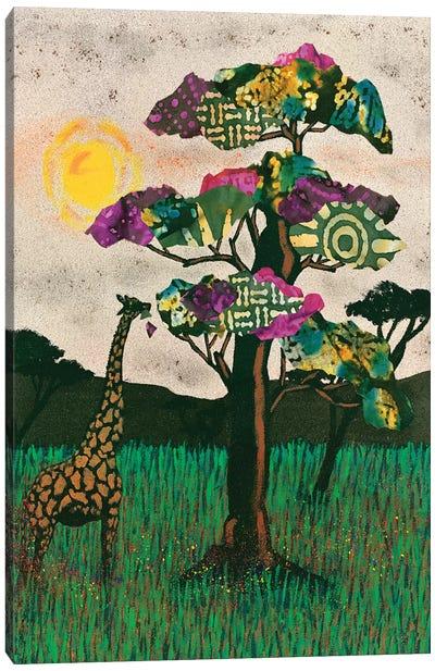 Planes of Africa II Canvas Art Print