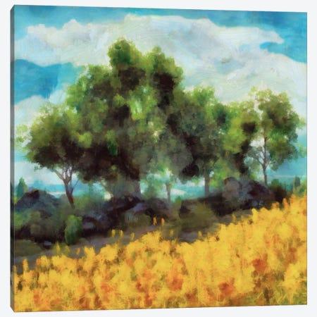 Mellow Yellow Landscape II Canvas Print #LON170} by Alonzo Saunders Canvas Artwork