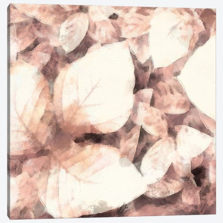 Blush Shaded Leaves II Canvas Print #LON203} by Alonzo Saunders Canvas Wall Art