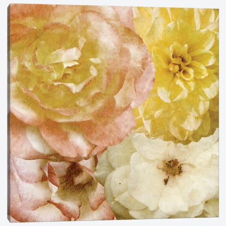 Beautiful Quartet I Canvas Print #LON96} by Alonzo Saunders Canvas Art
