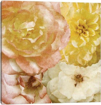 Beautiful Quartet I Canvas Art Print