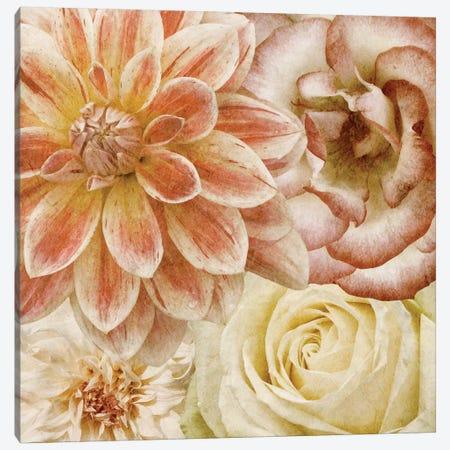Beautiful Quartet II Canvas Print #LON97} by Alonzo Saunders Canvas Art