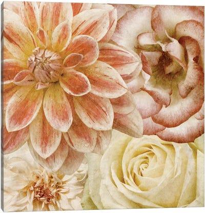 Beautiful Quartet II Canvas Art Print