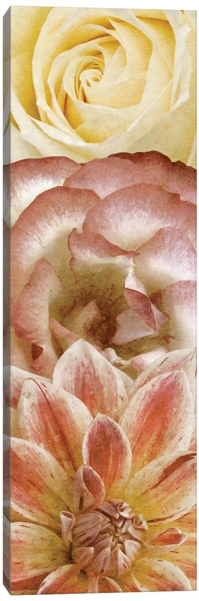 Beautiful Triad I Canvas Art Print