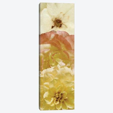 Beautiful Triad II Canvas Print #LON99} by Alonzo Saunders Canvas Art Print