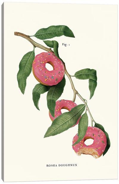 Donut Plant Canvas Art Print