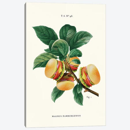 Burger Plant Canvas Print #LOO113} by Jonas Loose Canvas Print