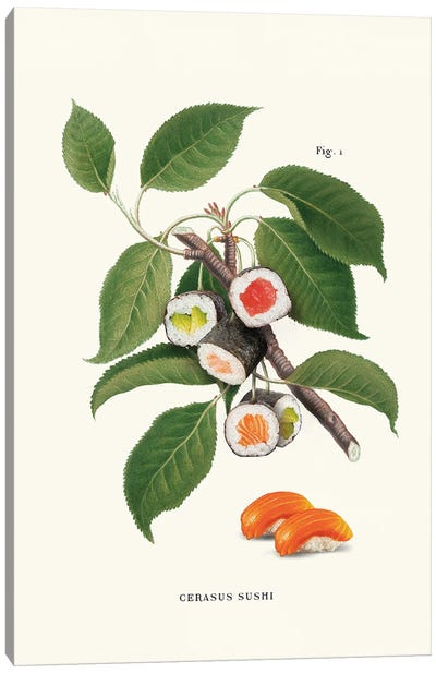 Sushi Plant Canvas Art Print