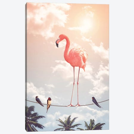 Flamingo & Friends Canvas Print #LOO12} by Jonas Loose Canvas Wall Art