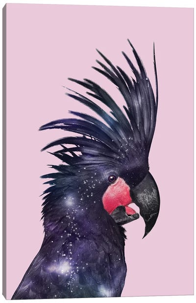 Galaxy Bird Canvas Art Print