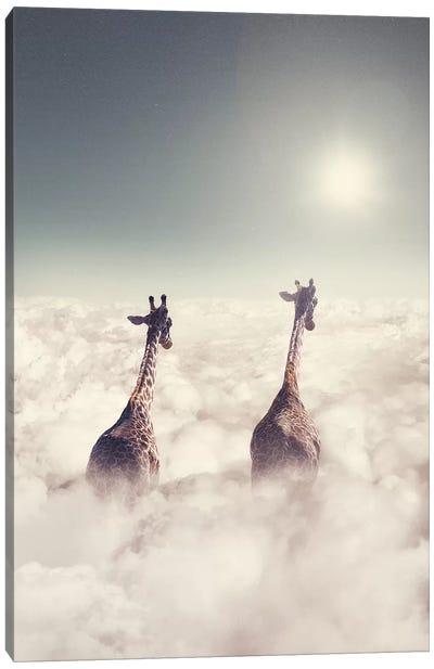 Giant Giraffes Canvas Art Print