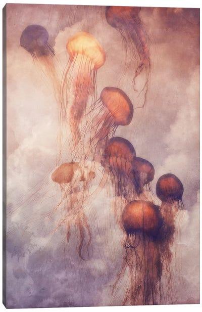 Jellyfish Sky Canvas Art Print