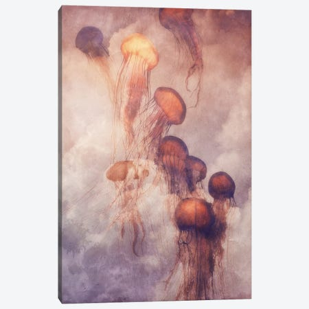 Jellyfish Sky Canvas Print #LOO19} by Jonas Loose Canvas Wall Art