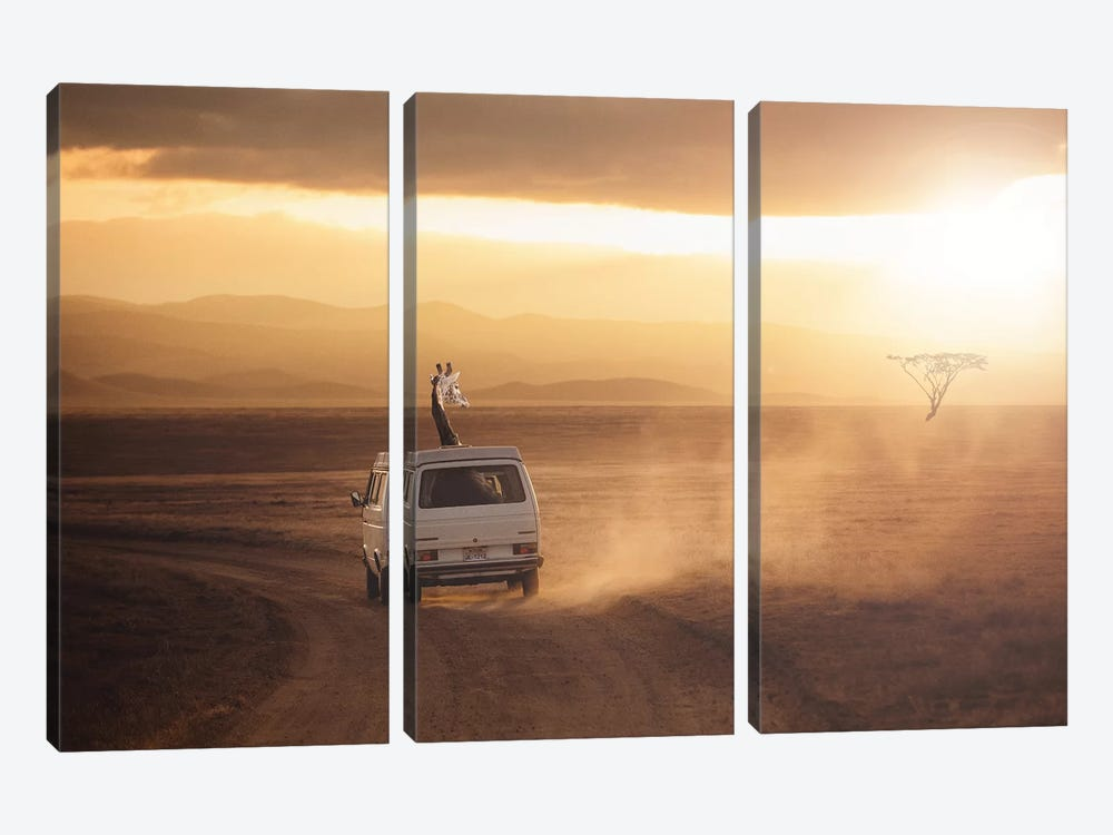 Adventure Is Calling by Jonas Loose 3-piece Canvas Art