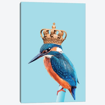 Kingfisher Canvas Print #LOO20} by Jonas Loose Canvas Print