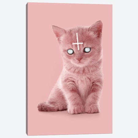 Lucipurr 3-Piece Canvas #LOO22} by Jonas Loose Canvas Art Print