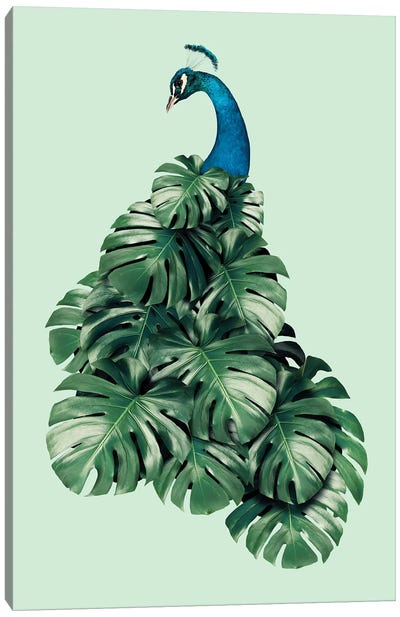 Monstera Bird Canvas Art Print