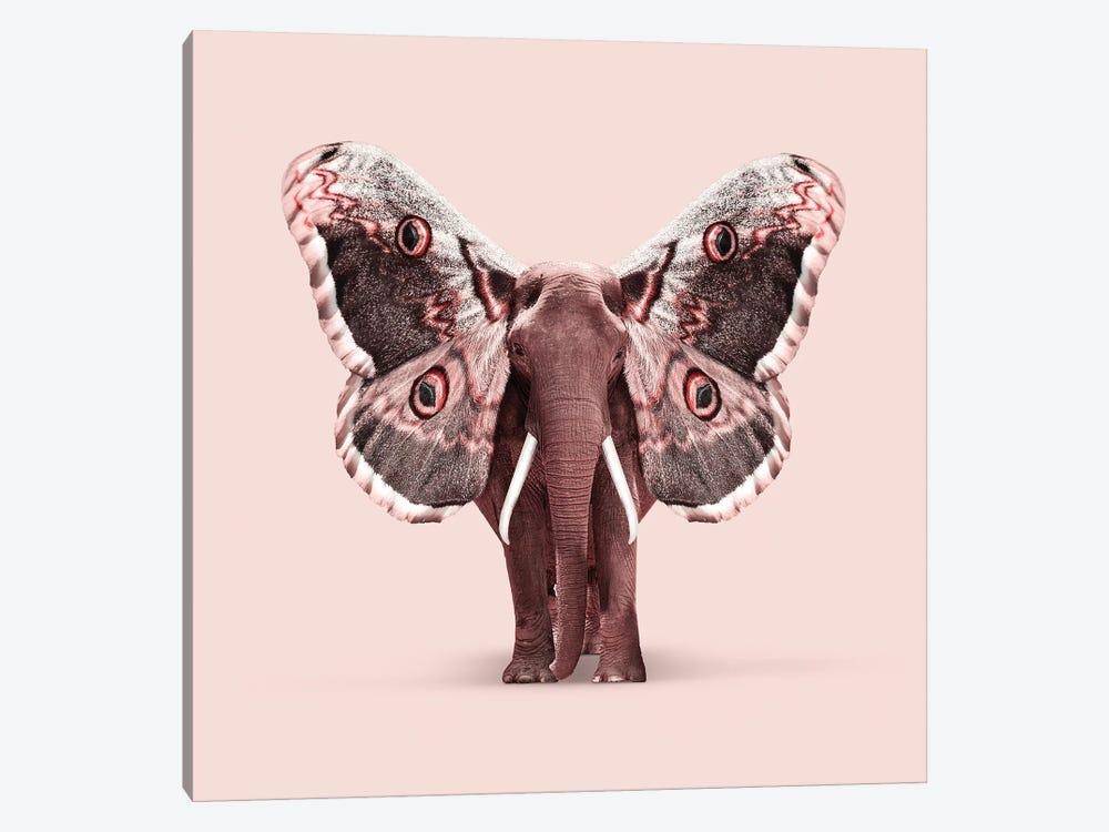 Papillophant by Jonas Loose 1-piece Art Print
