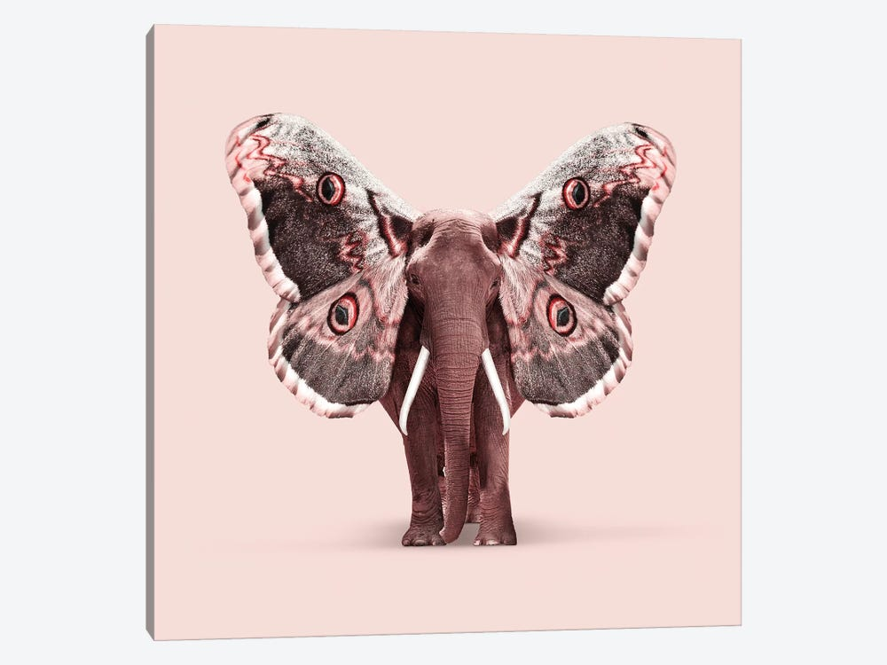 Papillophant by Jonas Loose 1-piece Art Print