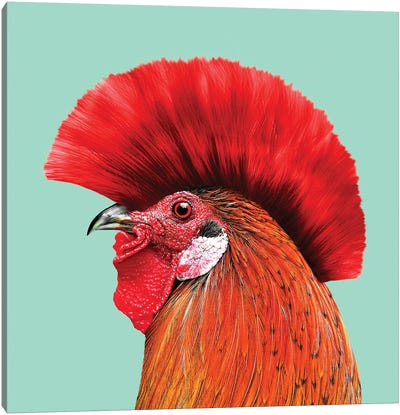 Punkcock Canvas Art Print