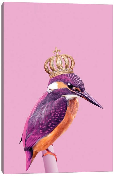 Queenfisher Canvas Art Print
