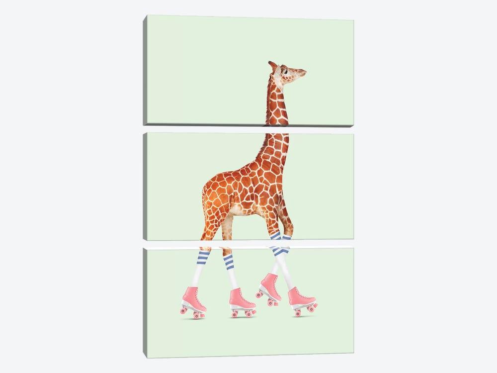 Rollerskating Giraffe by Jonas Loose 3-piece Canvas Print