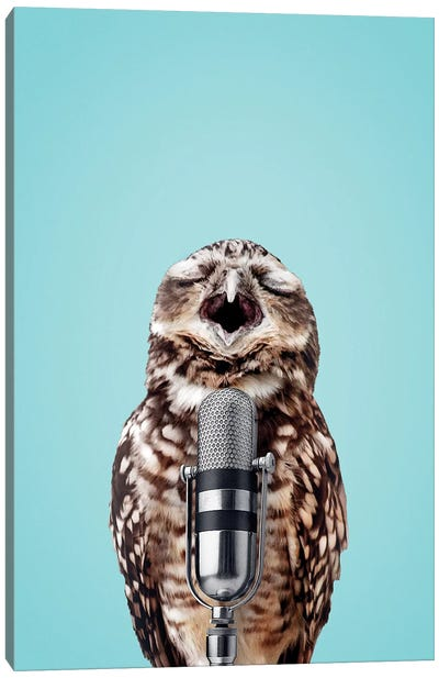 Singing Owl Canvas Art Print