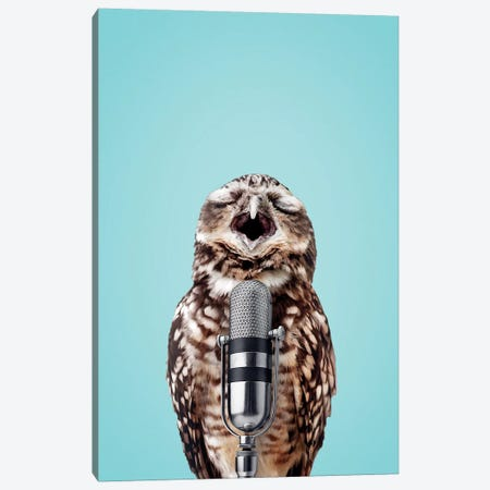 Singing Owl Canvas Print #LOO44} by Jonas Loose Canvas Artwork
