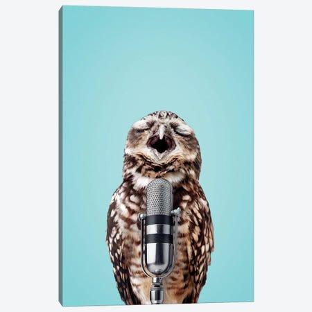 Singing Owl Canvas Print #LOO44} by Jonas Loose Canvas Artwork