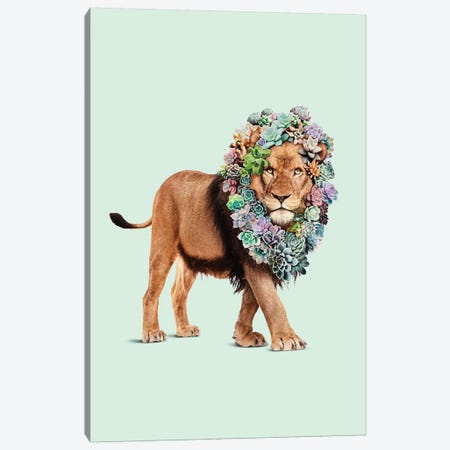 Succulent Lion Canvas Print #LOO45} by Jonas Loose Canvas Art