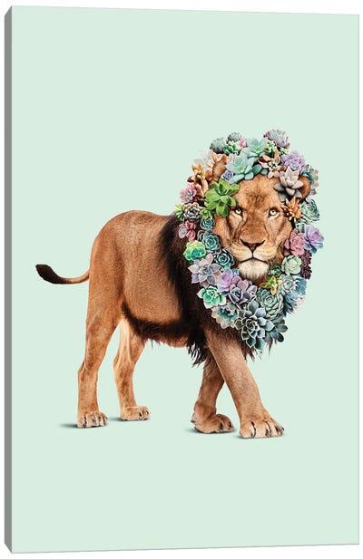 Succulent Lion Canvas Art Print