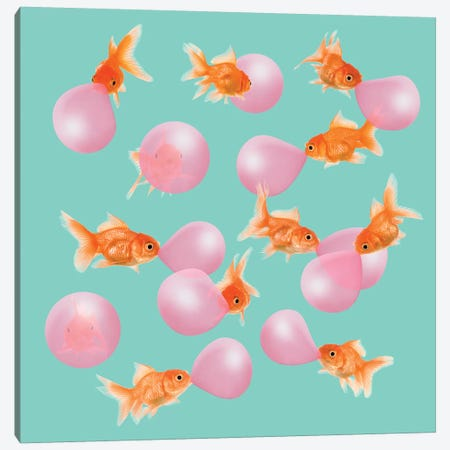 Bubblegum Goldfish Canvas Print #LOO4} by Jonas Loose Canvas Wall Art