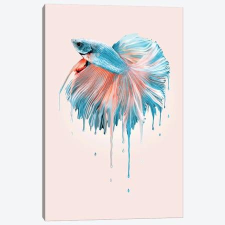 Melting Fish Canvas Print #LOO53} by Jonas Loose Canvas Artwork
