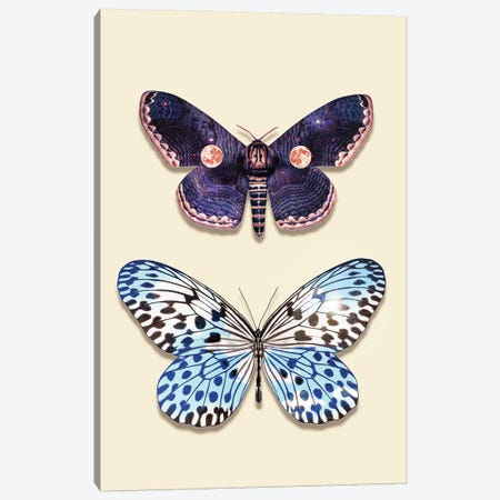 Night & Day Butterfly Canvas Print #LOO54} by Jonas Loose Canvas Print