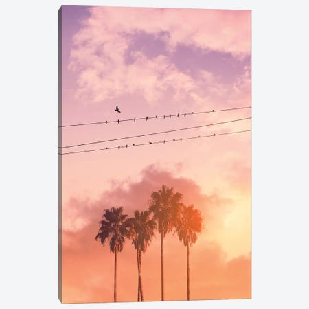 Birds On A Wire Canvas Print #LOO57} by Jonas Loose Canvas Art Print