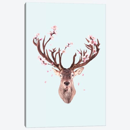 Cherry Blossom Deer Canvas Print #LOO61} by Jonas Loose Canvas Art Print