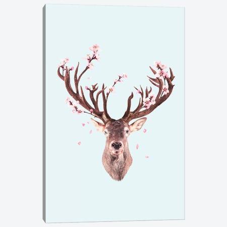 Cherry Blossom Deer Canvas Print #LOO61} by Jonas Loose Canvas Art Print