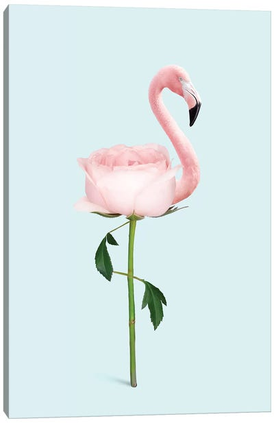 Flamingo Flower Canvas Art Print