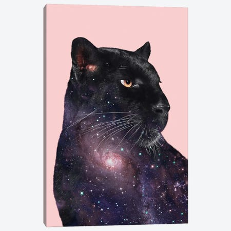 Galaxy Panther Canvas Print #LOO67} by Jonas Loose Canvas Artwork