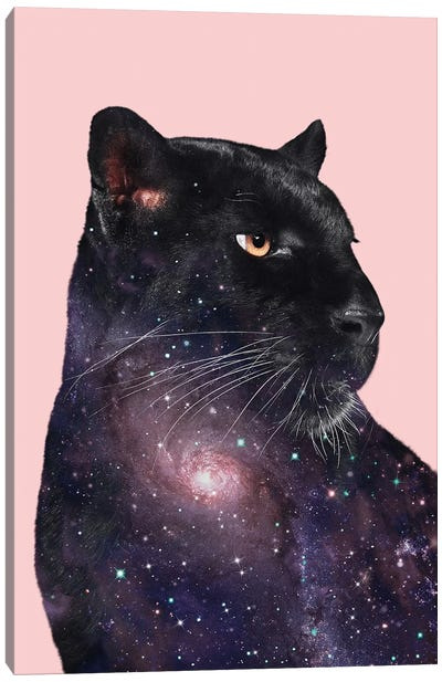 Galaxy Panther Canvas Art Print