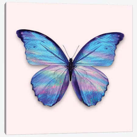 Holographic Butterfly Canvas Print #LOO69} by Jonas Loose Canvas Print