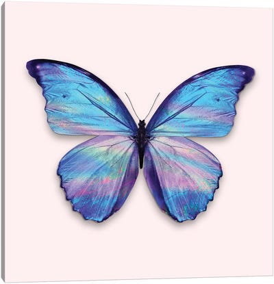 Holographic Butterfly Canvas Art Print