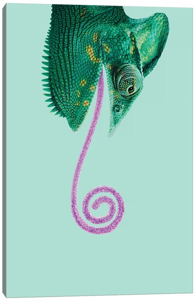 Candy Chameleon Canvas Art Print