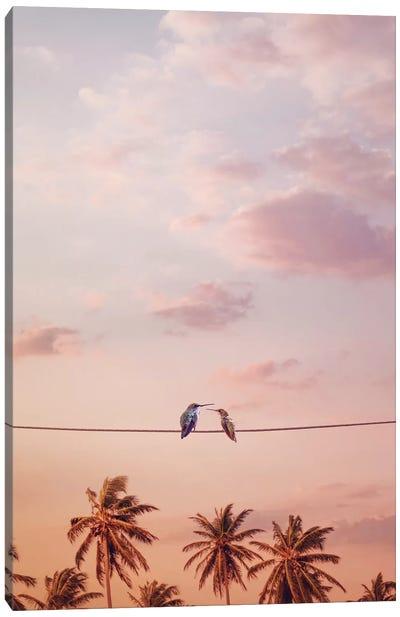 Hummingbirds In Love Canvas Art Print