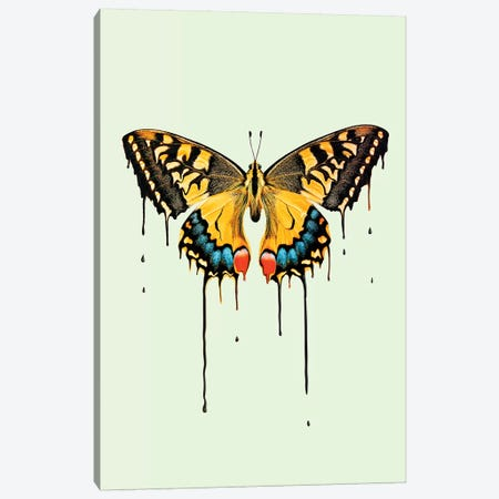 Melting Butterfly Canvas Print #LOO72} by Jonas Loose Canvas Art
