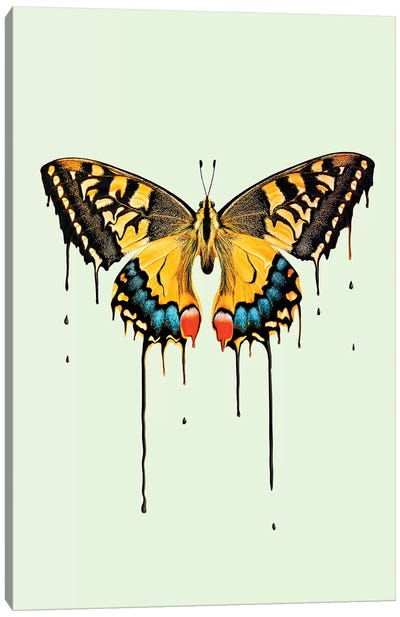 Melting Butterfly Canvas Art Print