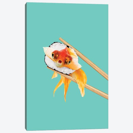 Sushi Goldfish Canvas Print #LOO79} by Jonas Loose Canvas Art
